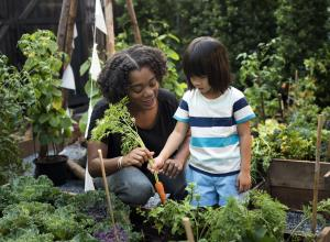 Early years provider showing a young girl the vegetable garden