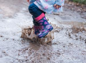 Activity in muddy puddles