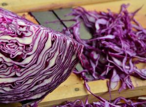 Cabbage that can be used in Black Bean Fuente.