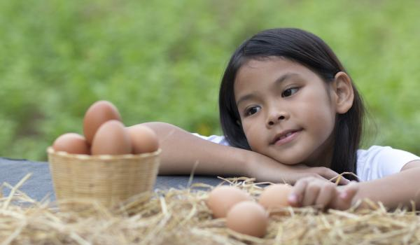 Girl staring at eggs